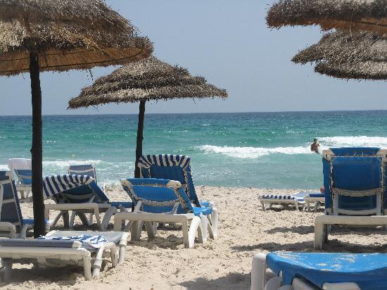 kelibia che delizia cap bon kelibia beach