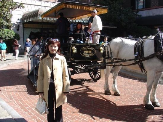 ชาร์ลสตัน, เซาท์แคโรไลนา: Horse-drawn carriage city tour.