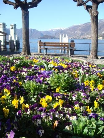 เบลลาจิโอ, อิตาลี: Feels like Vancouver