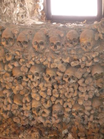 เอโวรา, โปรตุเกส: Some of these skulls have been disrespectfully been scribbled upon with graffiti. Two desiccated