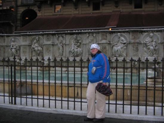 เซียนา, อิตาลี: um...some random fountain somewhere