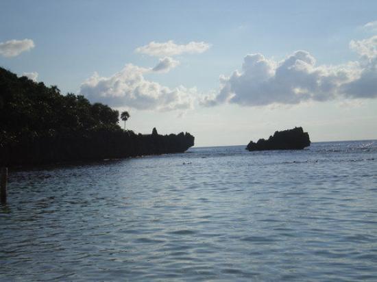 Roatan (เกาะโรอาทาน), ฮอนดูรัส: my favorite view on the beach