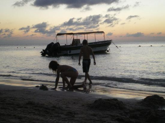 Roatan (เกาะโรอาทาน), ฮอนดูรัส: sis and bro playing on the beach