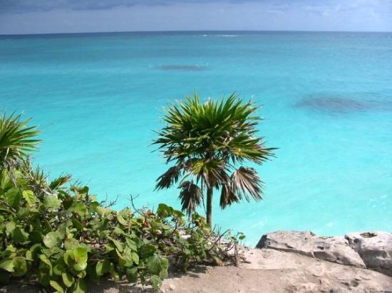 Mayan Aqua Dive: Riviera Maya