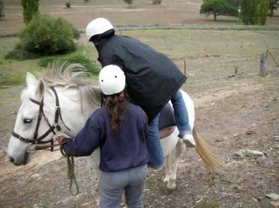 Bathurst, أستراليا: RIDING HORSE AT BATHURST