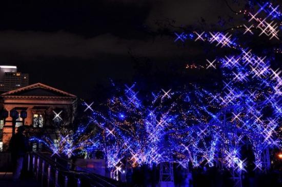 โอซาก้า, ญี่ปุ่น: 大阪其中一個聖誕節慶, 整條街也掛滿了細緻的燈飾, 隨著定時播放音樂而變動, 真的很美...  事前他都做好了工夫, 在哪兒有什麼節慶都一清二楚, 真的很好!! :)