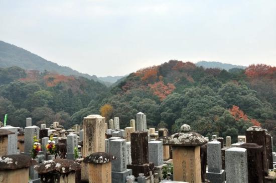 เกียวโต, ญี่ปุ่น: 我們下車後, 看到有好一些日本人也向山上行, 心想跟著他們一定沒錯的! 怎知... 他們不是遊清水寺, 他們真的是拜山去!! 結果我們便沿著墓地走上清水寺了~!!