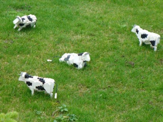 วินด์เซอร์, UK: 20070623 - Legoland Mini cows in Miniland