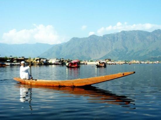 ศรีนาการ์, อินเดีย: Vendor of Dal lake
