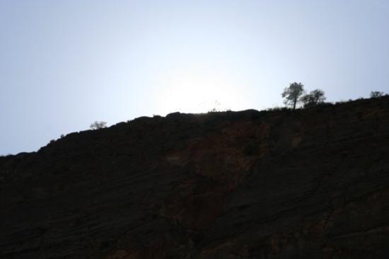 Zion's Main Canyon: Zion NP