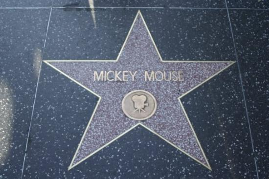 Hollywood Walk of Fame: LA - Hollywood