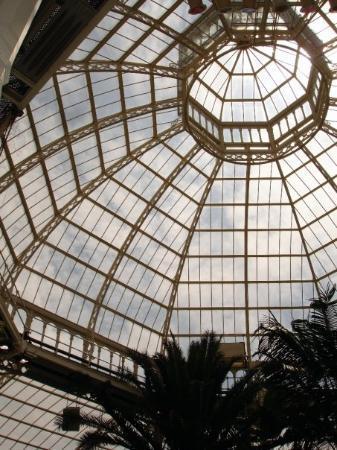 ลิเวอร์พูล, UK: The Palm House