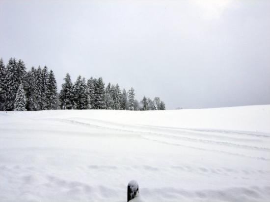 เอนเกลเบิร์ก, สวิตเซอร์แลนด์: Waist deep in snow! Engelberg, Switzerland - Dec 2007