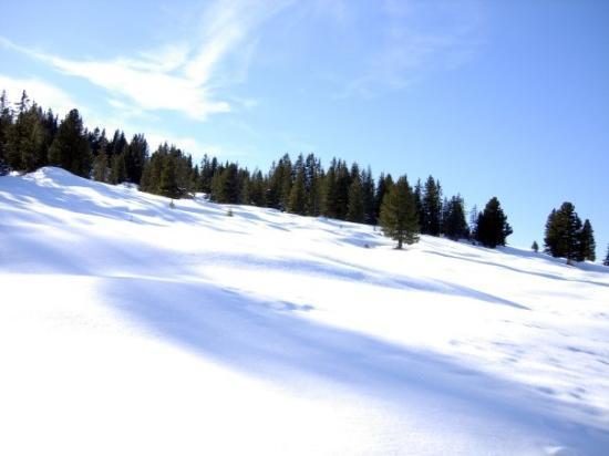 Mayrhofen, Austria | January 2008