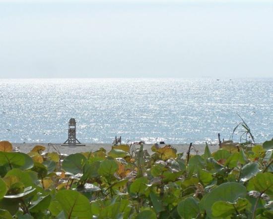 บอยน์ตันบีช, ฟลอริด้า: My Fav. Picture of Boynton Beach