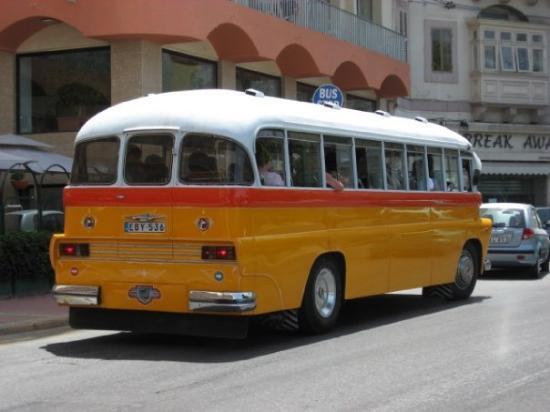 วัลเลตตา, มอลตา: Typical Maltese Bus