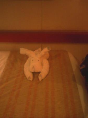คาตี, เท็กซัส: puppy towel friend