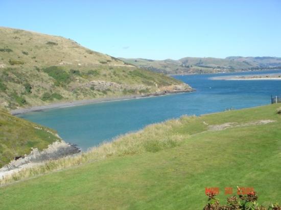 Otago Peninsula ภาพถ่าย
