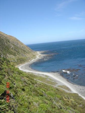 เวลลิงตัน, นิวซีแลนด์: Wellington, New Zealand Coast just outside Wellington
