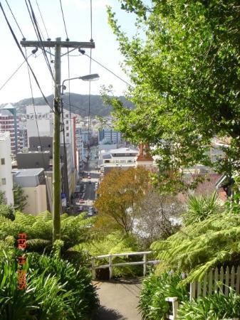เวลลิงตัน, นิวซีแลนด์: Wellington, New Zealand Top of Dixon Street Stairs (210)