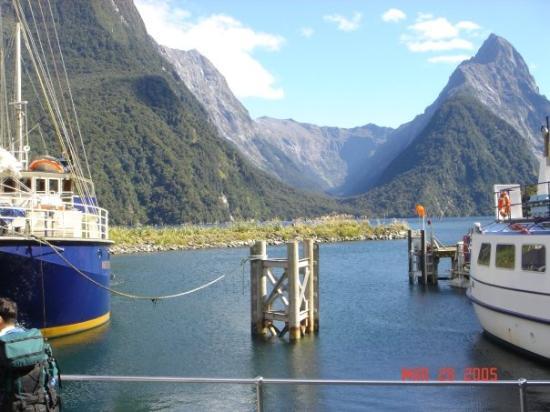 Mitre Peak Cruises ภาพถ่าย