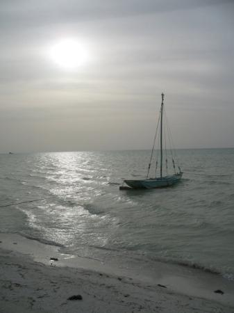 Holbox Island ภาพถ่าย