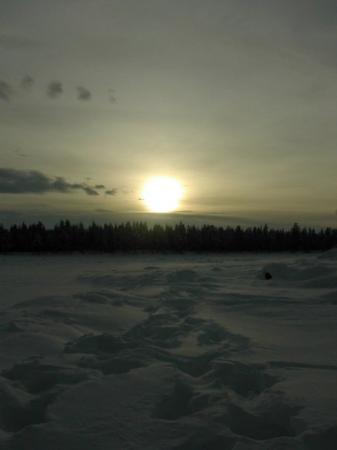 คีรูนา, สวีเดน: Laponia