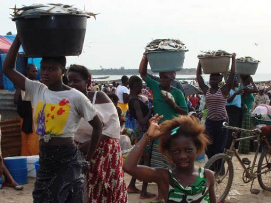 Kotu, แกมเบีย: TanjiVillage