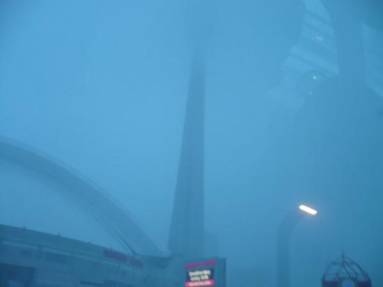 โตรอนโต, แคนาดา: La famosisima torre CN ni se ve la parte de arriba se imaginan el frio