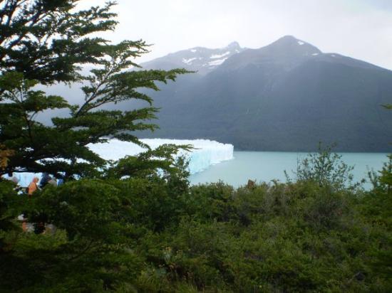 เอลคาลาเฟต, อาร์เจนตินา: Glaciar