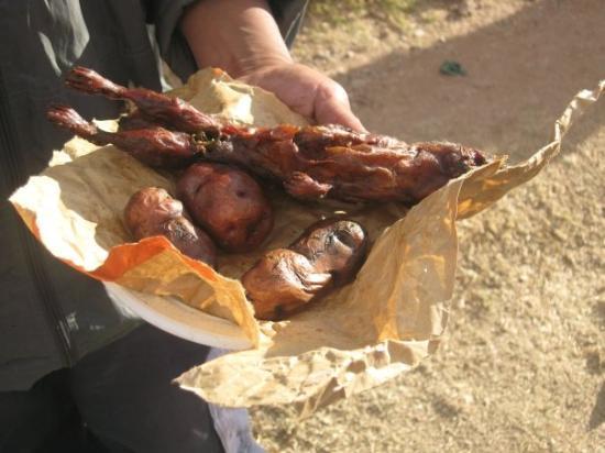 กุสโก, เปรู: Who's joke is this about having boxed lunches? Guinea Pigs... yumm