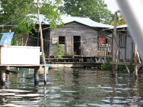 Bocas Town, ปานามา: Let's pick up a local at their home