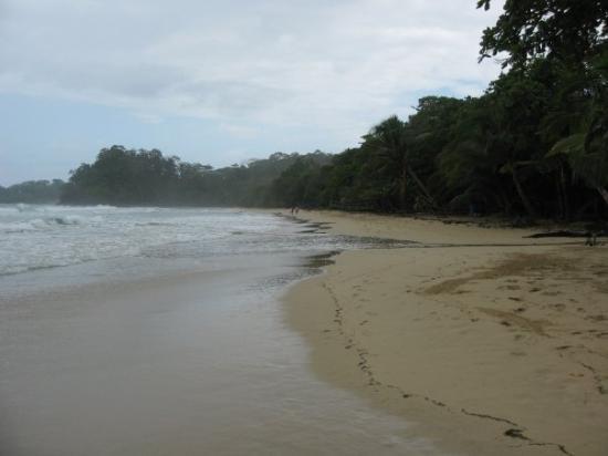 Bocas Town, ปานามา: Found my quiet spot