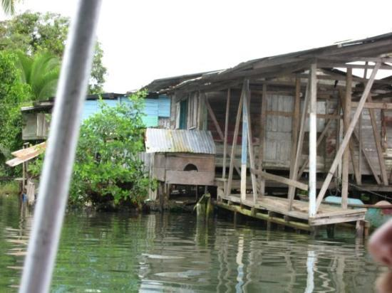 Bocas Town, ปานามา: Somewhere lost in Panama