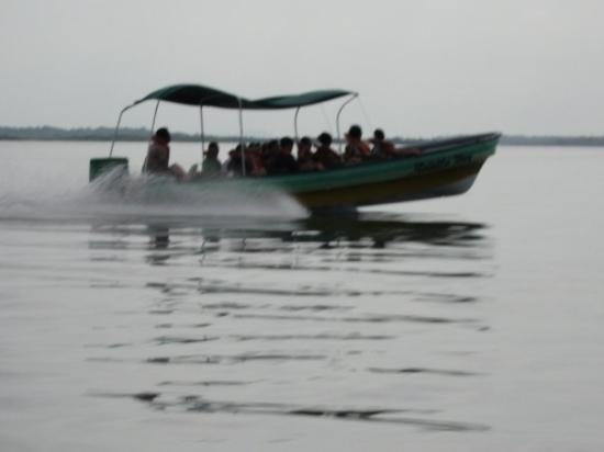 Bocas Town, ปานามา: My taxi is faster than yours!