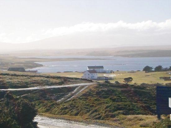สแตนลีย์, หมู่เกาะฟอล์กแลนด์: Darwen.