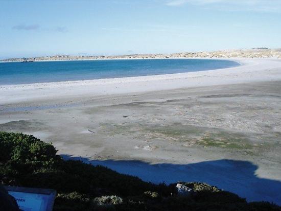 สแตนลีย์, หมู่เกาะฟอล์กแลนด์: Think this is York Bay, beautiful beach near Stanley.