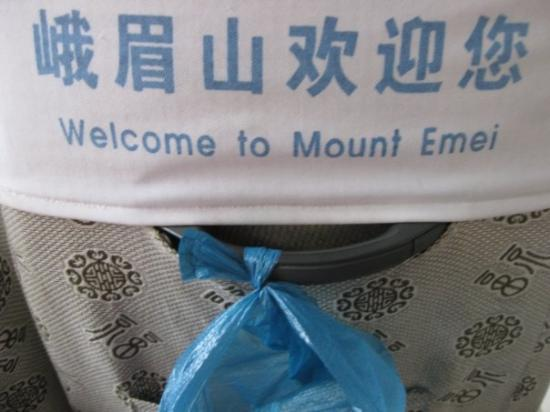 Mount Emei (Emeishan): The guide told us to get prepared to vomit in the bus because the way up the mountain is harsh!