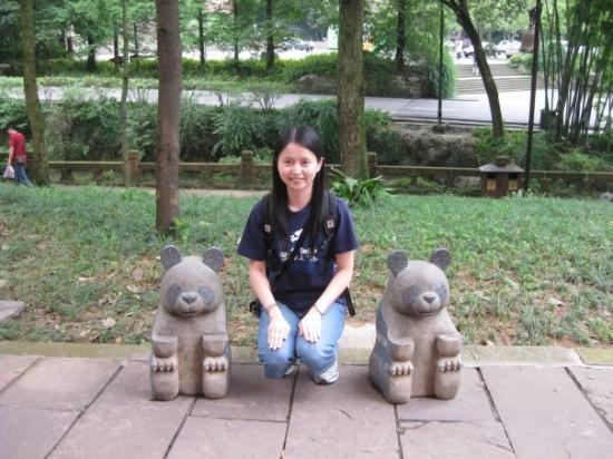 Mount Emei (Emeishan): Panda~