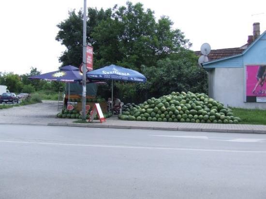 Slavonski Brod, โครเอเชีย: lubenice!
