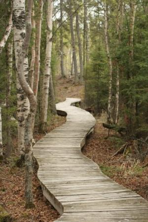 Prince Albert's other little trail.