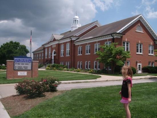 คอลลินสวิลล์, อิลลินอยส์: Collinsville Memorial Public Library 408 W. Main St.  I walked Ashley there so she could get s