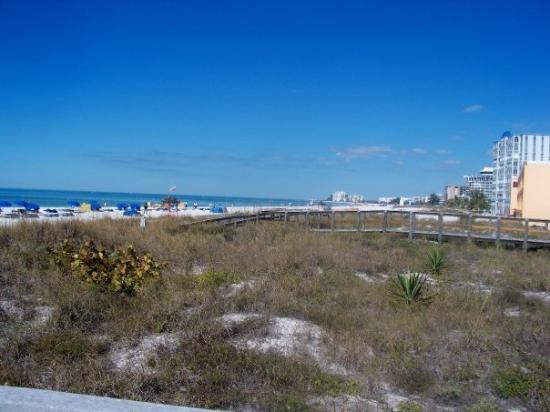 เซนต์ปีเตอร์เบิร์ก, ฟลอริด้า: St. Pete beach - it really is beautiful there.