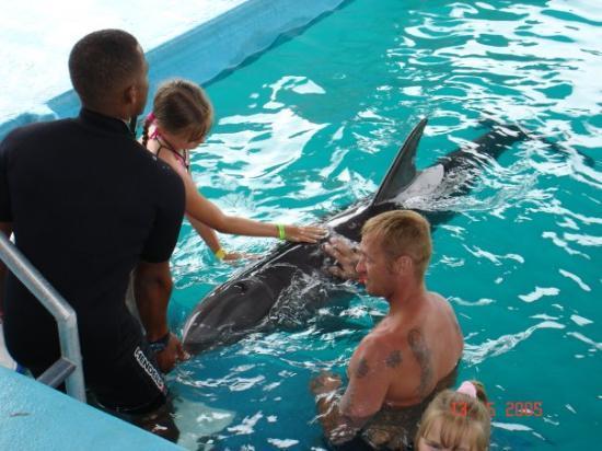 Ocean World Adventure Park: OCEAN WORLD PUERTO PLATA