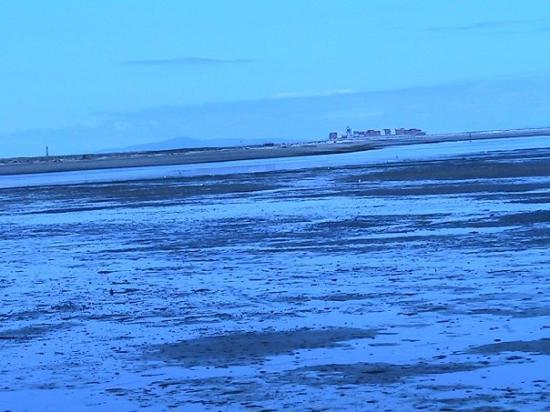 เซแกง, วอชิงตัน: lighthouse in the distance, 3 miles away