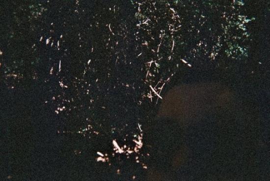 โอคลาโอมาซิตี ภาพถ่าย