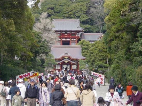 Looking toward the Tsurugaoka hachimangu shrine.