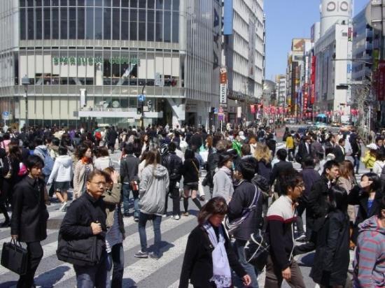 ชิบูยา, ญี่ปุ่น: Shibuya crossing from ground level.