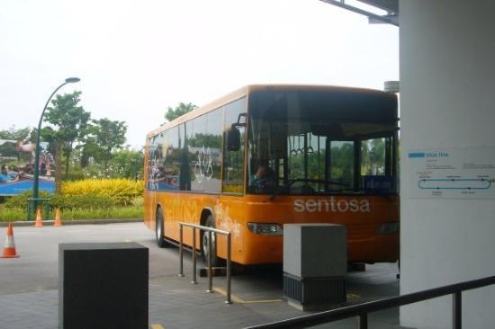 เกาะเซนโตซา, สิงคโปร์: ...sentosa bus..