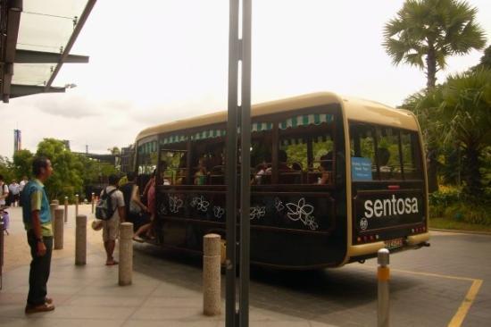 เกาะเซนโตซา, สิงคโปร์: ...sentosa beach bus ...